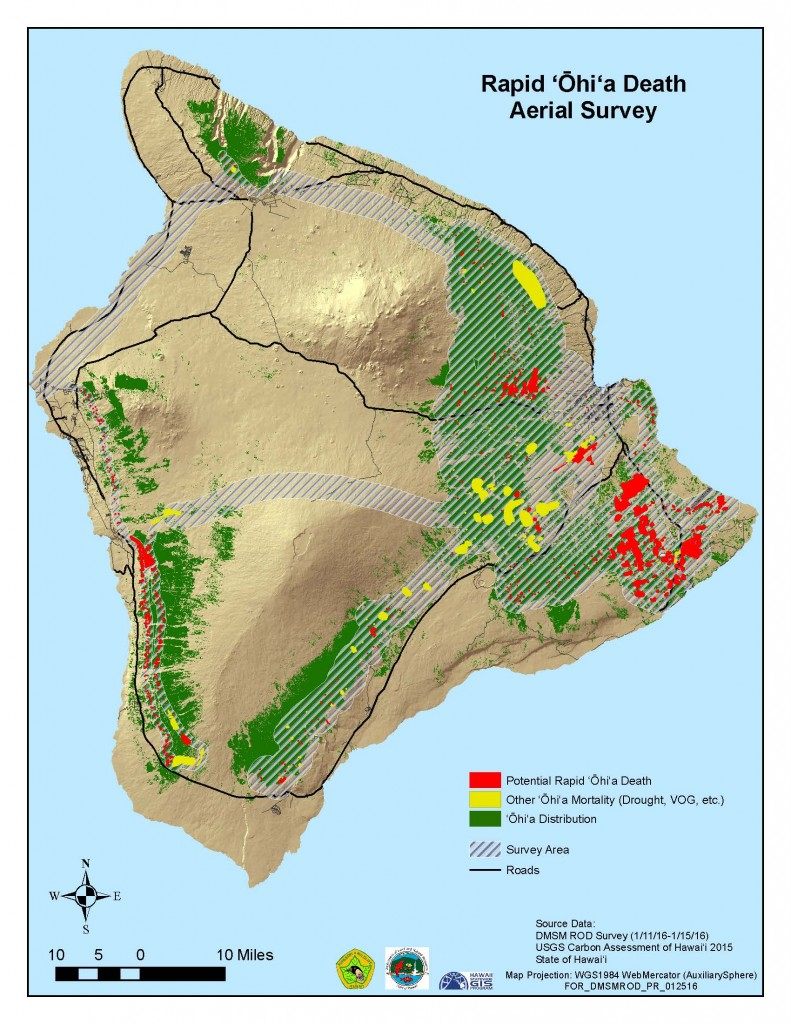 Rapid Ohia Death in Hawaii County District 5